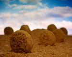 Ernie Button: Bales of Shredded Wheat #4, 2012