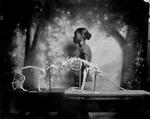 Keith Carter: Evolution of a Thought, 2012