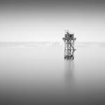 Michael Levin: Watch Tower, 2007