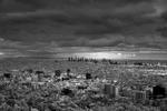 Mitch Dobrowner: Urbane