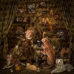 Patty Carroll: Catlady