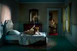 Richard Tuschman: Pink Bedroom (Odalisque), 2013