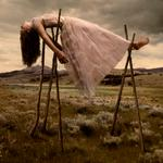 Tom Chambers: Prom Gown #3, 2005