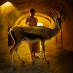 Tom Chambers: Tunnel Vision